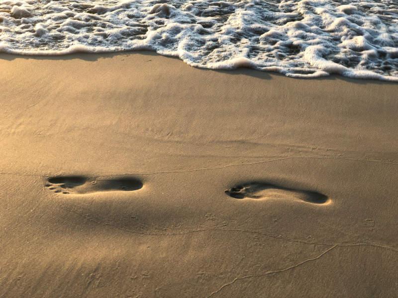 save the ocean reduce footprint