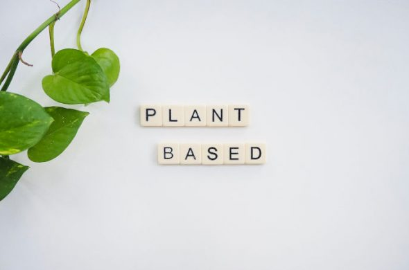 sustainable plant based