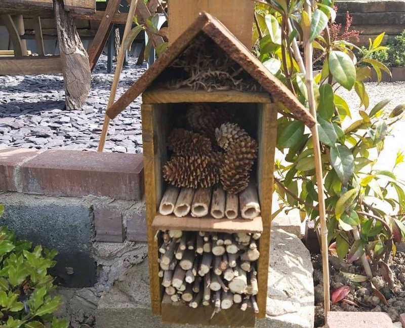 wildlife garden with insect hotels