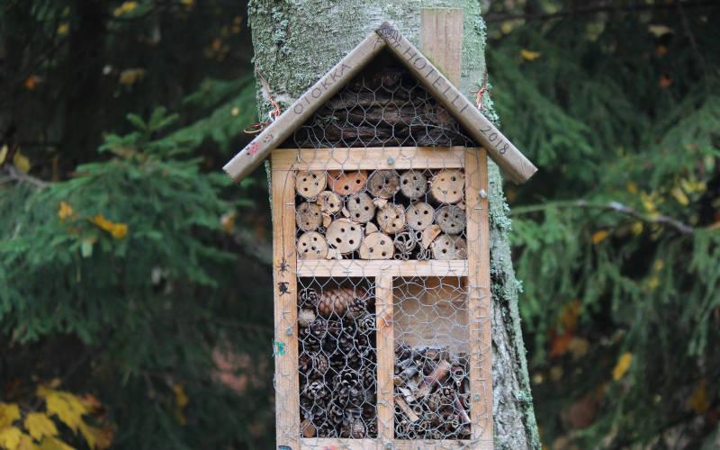 wildlife garden insect hotel