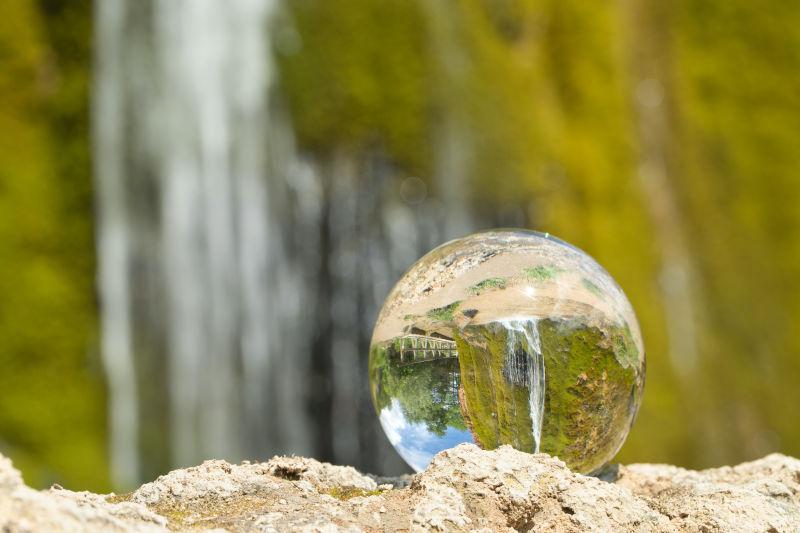 wildlife garden sphere
